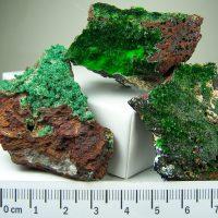 Conichalcite specimens from Iron Co., Utah